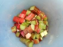 strawberry rhubarb pie 005