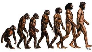 THE GREAT HOAX OF EVOLUTION - NNADIKE JEREMIAH 1