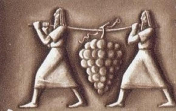 מרגלים יין
