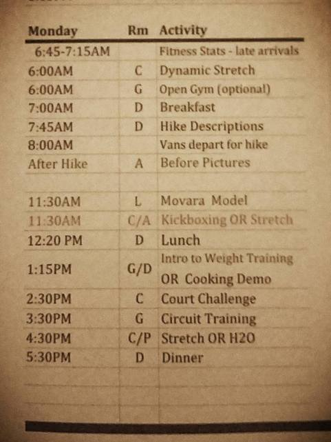 Day 1 Program. Newbies had to do Movara Model (lecture) and the Intro to Weight Training (instructional).