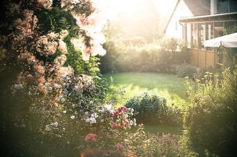 94432-Flower-Garden