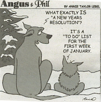 New Year Resolution PC: Angus & Phil
