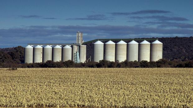 Grain Marketing Board