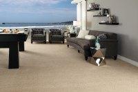 Sale Carpet Inventory  M & Z Carpets and Flooring
