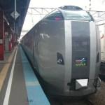 函館本線:スーパーカムイ事故 2010/01/29