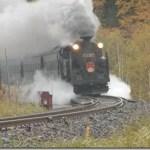 SLニセコ C11-207 函館本線 ②