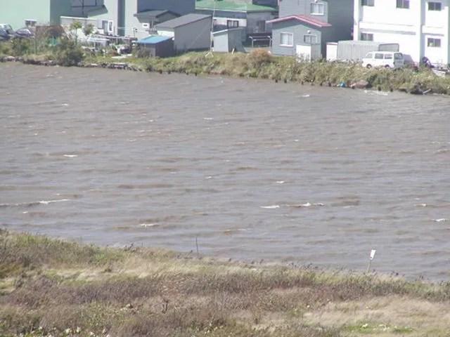 台風襲来 (1)