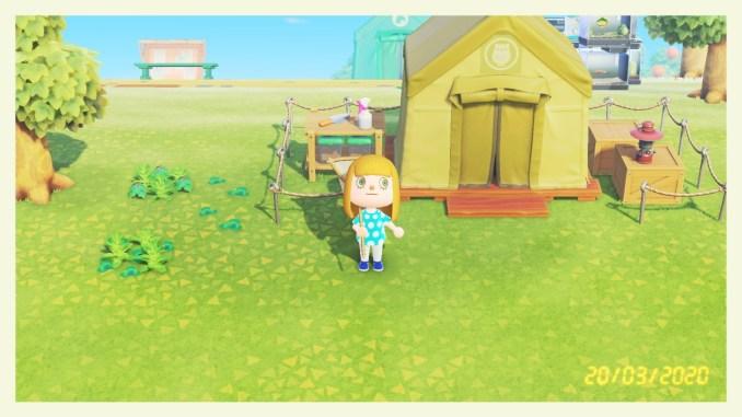 Das Bild zeigt einen wichtigen Teil von Animal Crossing: New Horizons. Man erkennt unseren Avatar, welcher vor einem Zelt steht. Über dem Eingang ist ein Loge angebracht. Es handelt sich um eine Eule in einem Kreis. Das altbekannte Zeichen für das Museum. Das Zelt ist in einem gedeckten grün.