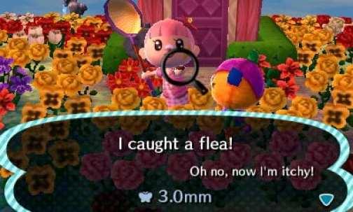 Das Bild zeigt einen Charakter aus Animal Crossing. Er steht in Mitten von Hunderten Blumen und hält einen Floh in der Hand. Vor ihm steht ein Dorfbewohner.