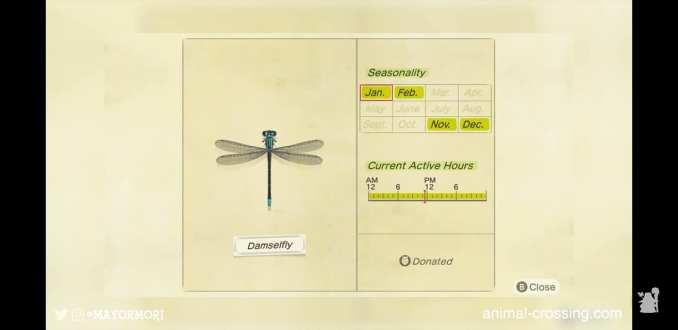 Das Bild zeigt ein Insekt aus dem Spiel Animal Crossing: New Horizons. Es handelt sich um eine Libelle. Man erkennt detaillierte Informationen zum Auftreten des Insektes.