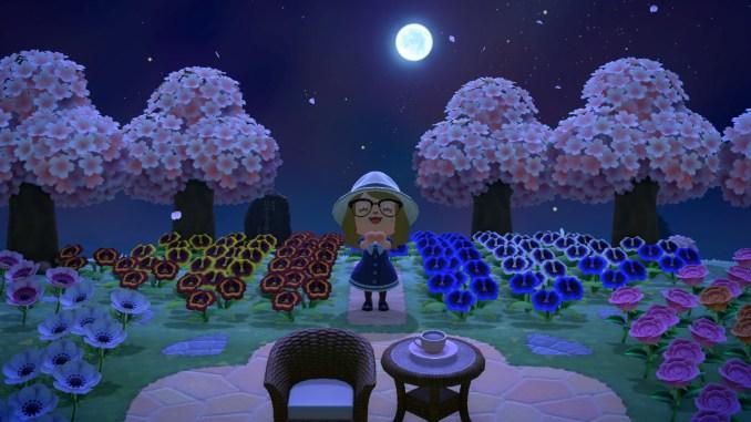 "Dieses Bild zeigt die Kirschblüten in ""Animal Crossing: New Horizons""."