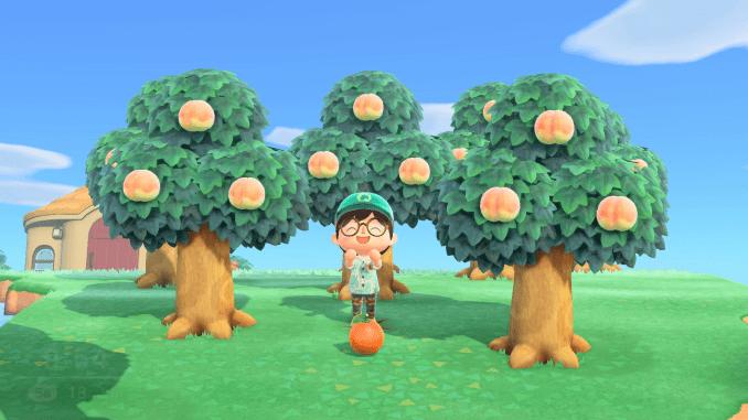 Das Bild zeigt einen Animal Crossing-Charakter, welcher inmitten von sechs Pfirsich-Bäumen steht. Vor ihm liegt eine Orange auf dem Boden.