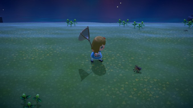 Dieses Bild zeigt die Konfrontation mit einer Vogelspinne in Animal Crossing und den angewandten Spinnen-Trick.