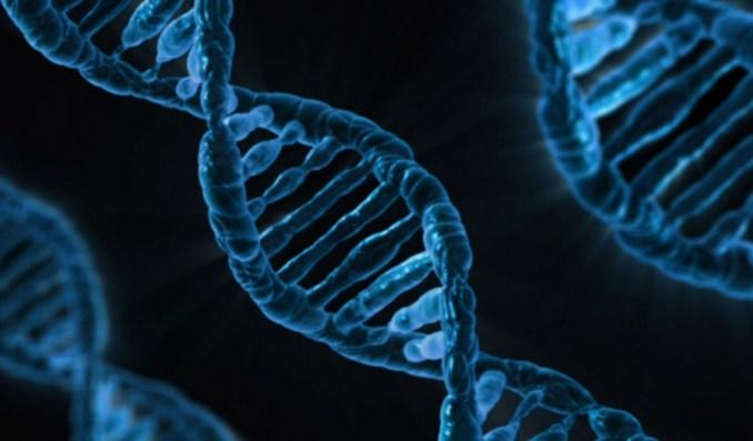 """Das Bild zeigt eine schematische Zeichnung der Gene. Man sieht die verdrehte DNA. Gene haben eine Auswirkung auf auf die Zucht von Blumen in """"Animal Crossing: New Horizons""""."""