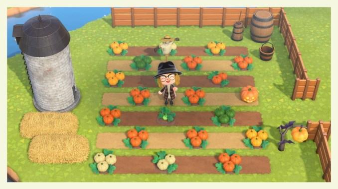 """Das Bild zeigt angepflanzte Kürbisse, die mit dem Update 1.5.0 für """"Animal Crossing: New Horizons"""" hinzu gepatcht wurden."""