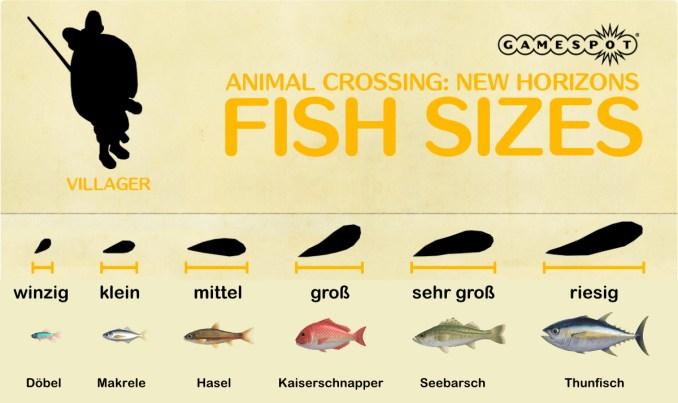"""Das Bild zeigt die verschiedenen Größen von Fischen in """"Animal Crossing: New Horizons""""."""