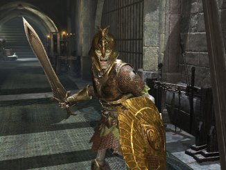 """Das Bild zeigt eine Szene aus dem Spiel """" The Elder Scrolls: Blades""""."""