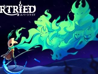 """Das Bild zeigt das Logo von """"Evertried""""."""