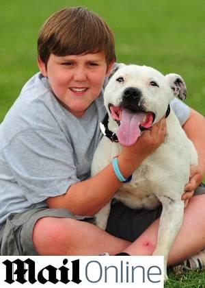 Dean arriscou a vida para salvar seu cachorro