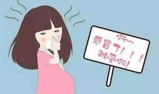 當孕吐期遇上感冒怎么辦? 早孕 孕媽 孕吐_新浪育兒_新浪網