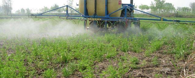 生態三農:吡蟲啉對人毒性大嗎?注意使用方法即可|吡蟲啉|藥劑|毒性_新浪新聞