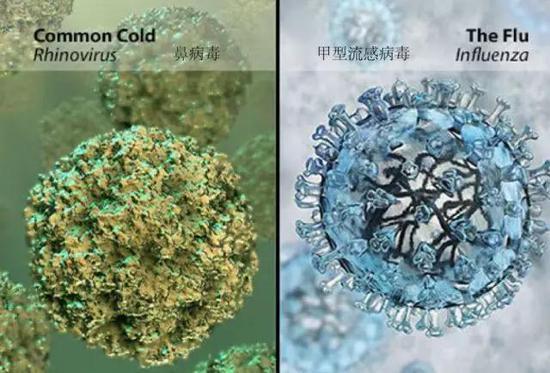 小心流感卷土重來!5個知識點助你抗擊流感! - 學術教育 - 倍可親