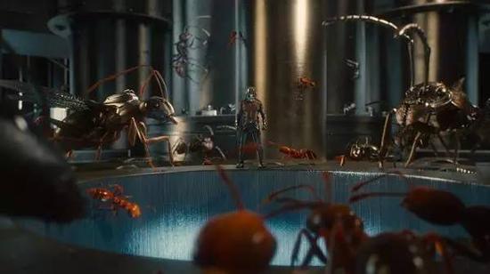 解讀科幻電影《蟻人》:以小搏大的螞蟻軍團 螞蟻 《蟻人》_新浪科技_新浪網
