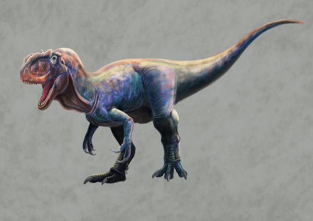 大型肉食龍類