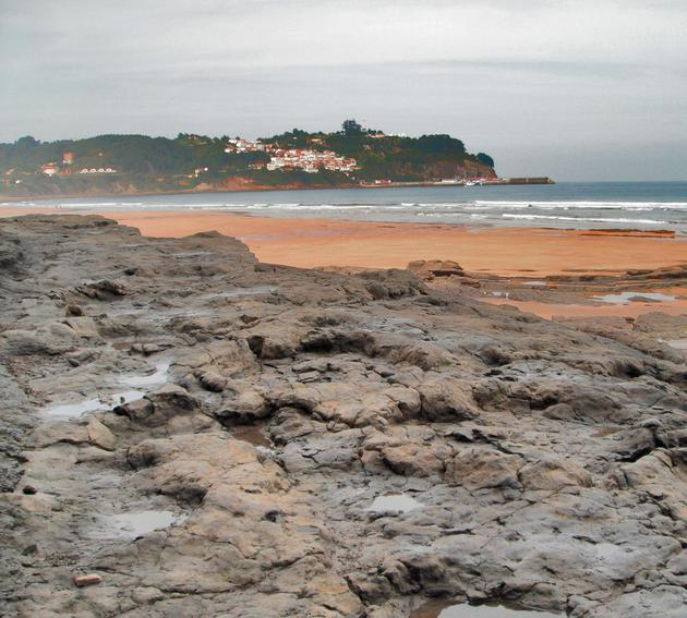 西班牙阿斯图里阿斯恐龙海岸的恐龙足迹