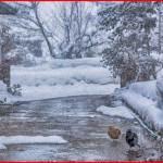 ラニーニャ現象を簡単に分かりやすく解説!日本への気温や天候の影響は?