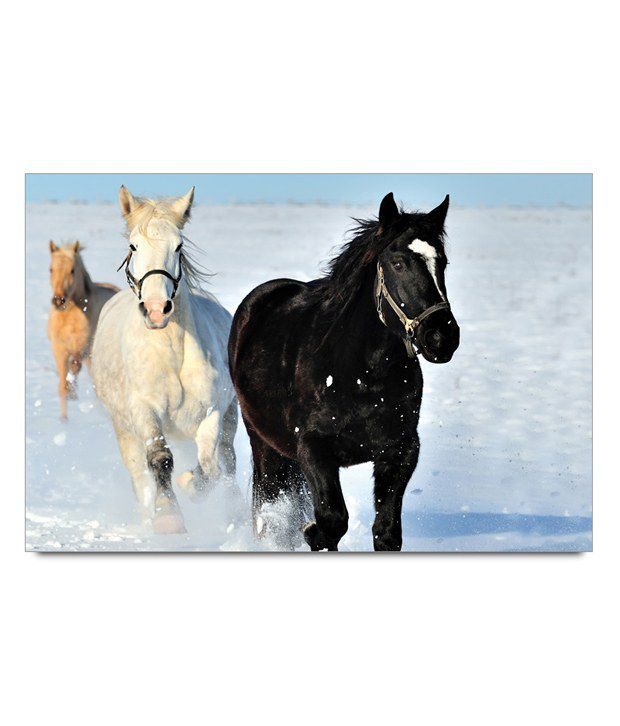 Amy Wild Horses Poster: Buy Amy Wild Horses Poster at Best Price in India on Snapdeal