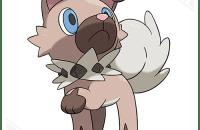 Dettagli sui Nuovi Pokémon 11