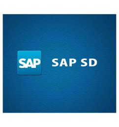sap sd e certificate course online video training material technical support  [ 850 x 995 Pixel ]