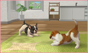nintendogs_cats-4