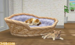 nintendogs_cats-3