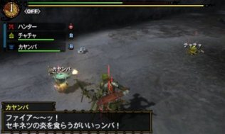 monster_hunter_tri_g_r-11
