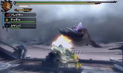 monster_hunter_tri-g-5