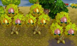 animal_crossing_new_leaf-12
