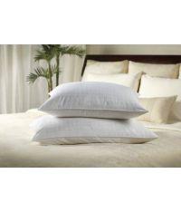 Sobella Gel Fiber Pillow (Standard)