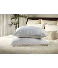 Sobella Gel Fiber Pillow (Standard) - Buy Sobella Gel ...