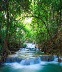 Buy Wallpaper Inc Waterfall Wallpaper Online at Low Price ...