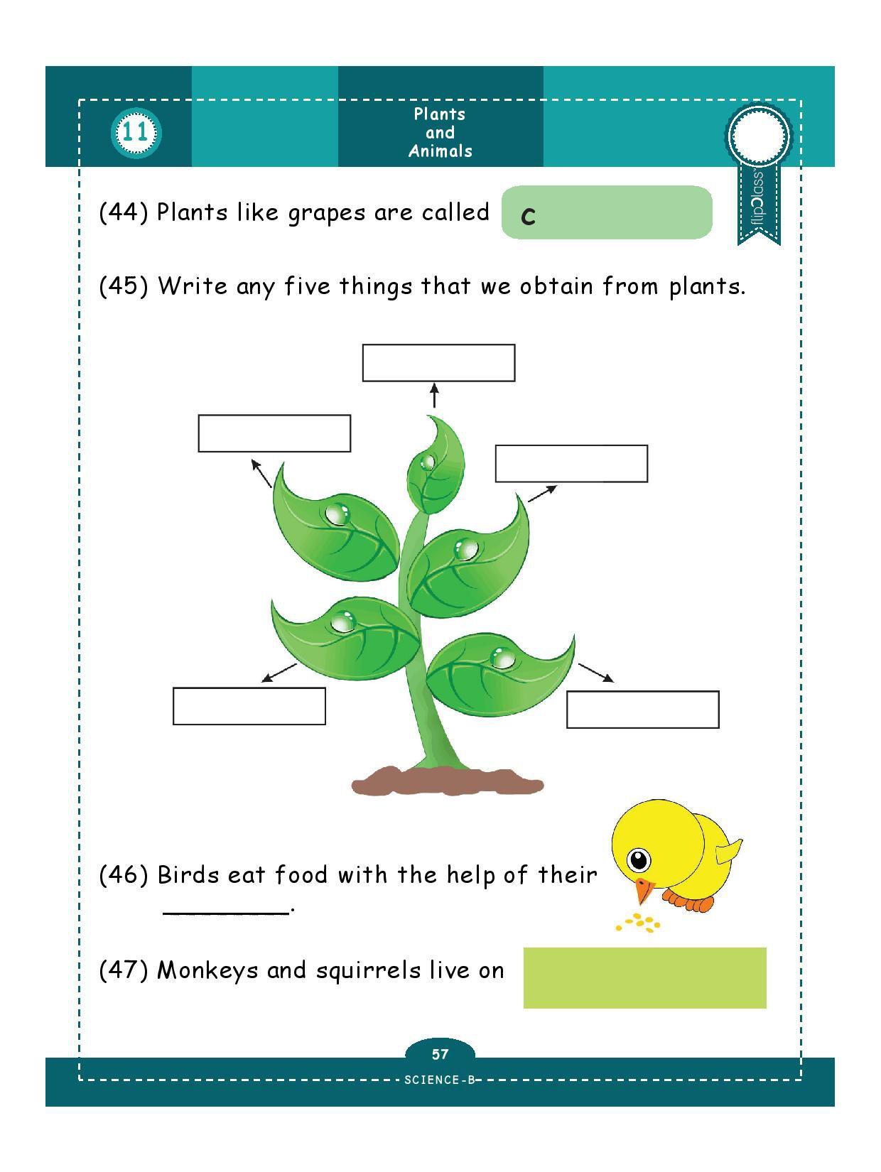 hight resolution of Genius Kids Worksheets (Bundle) for Class 1 (Grade-1) - Set of 6 Workbooks  (English