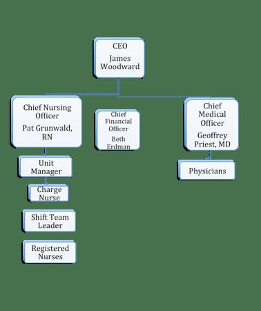 Functional organizational structure in literature also healthcare structural analysis  son rh wordpress