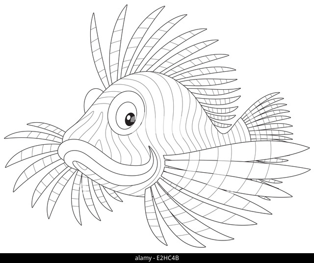 Coloring Snail Black And White Vector Illustration Stock
