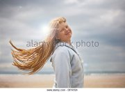 windy day stock &