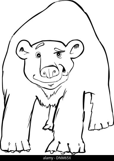 Cute Cartoon Polar Bear Ice Stock Photos & Cute Cartoon
