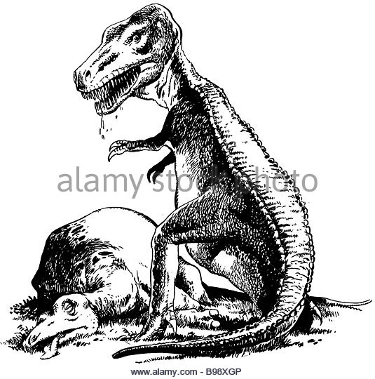 Drawn Tyrannosaurus Rex Velociraptor