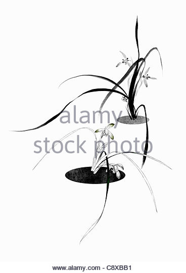 Purity Drawing Stock Photos & Purity Drawing Stock Images