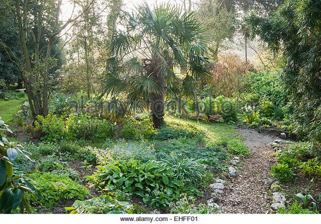 Garden Path Edging Stock Photos Amp Garden Path Edging Stock