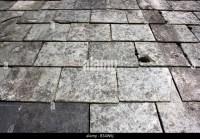 Slate Roof Tile Stock Photos & Slate Roof Tile Stock ...